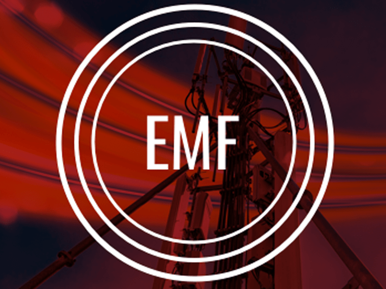 What is EMF?