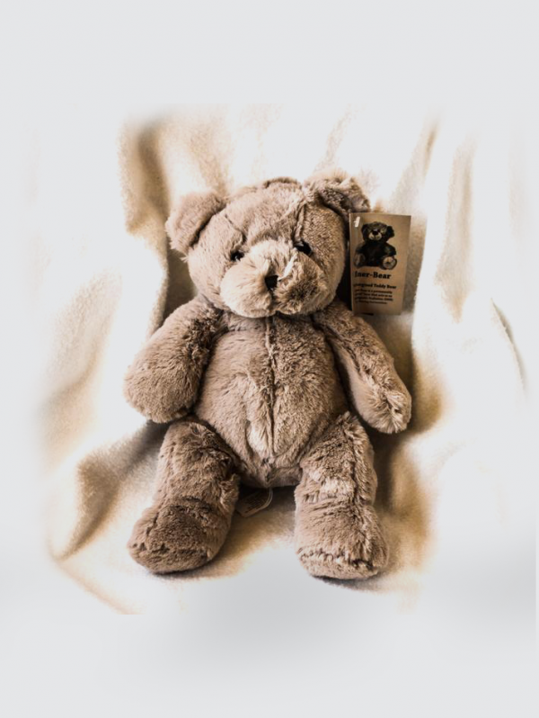 emf bear for kids